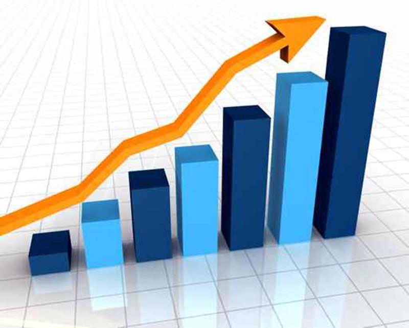 El sector está en auge. Datos 2016